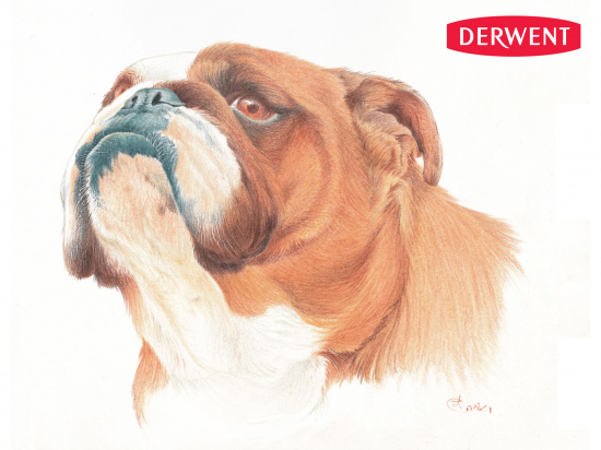 "DERWENT Карандаши цветные ""Drawing"" поштучно"